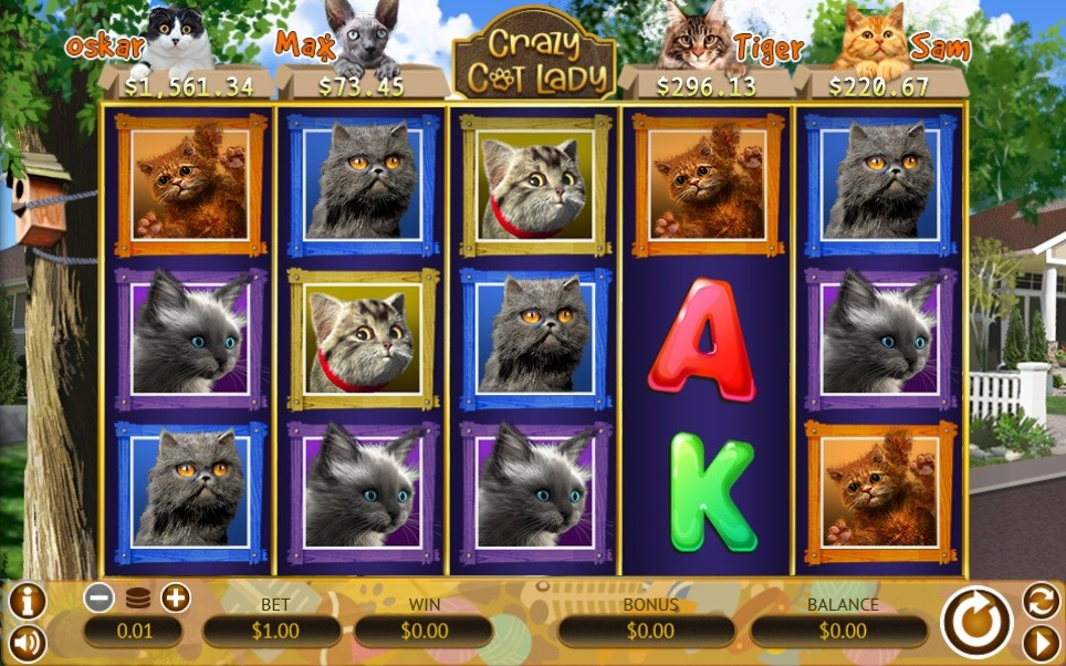 Red Stag Casino Slots 4