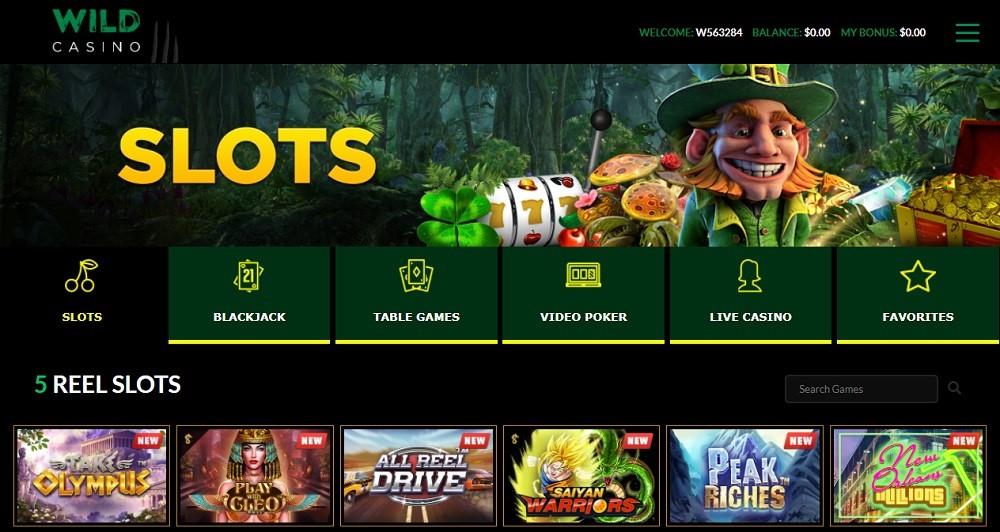 Wild Casino Members Area