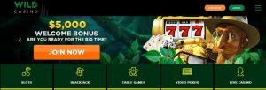 Wild Casino Review
