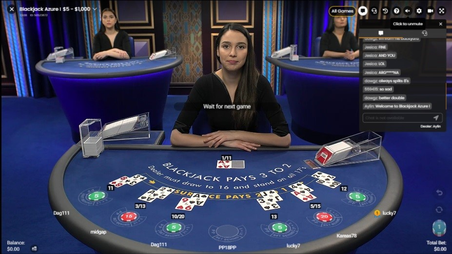 Playamo Casino Live Blackjack