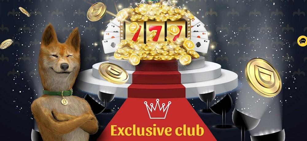 Dingo Casino Rewards Program